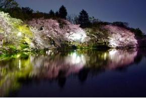 Парки Токио в «Зарядье»: международная конференция «ПаркЛаб»