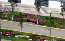 Цветники на набережной (2011)