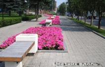 Цветник вдоль ул. Лихвинцева (2009).