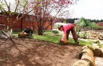 Укладка рулонного газона (имеется 6 сортов)